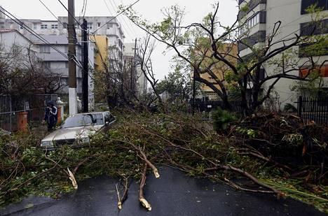 Myrskyn tuhoja San Juanissa.