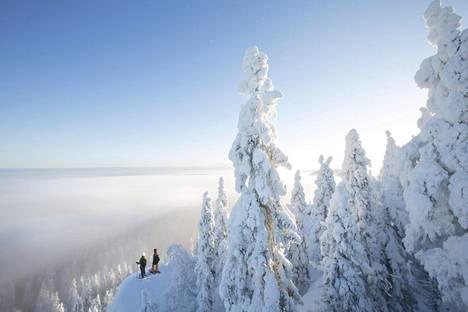 Kolin luontoon voi tutustua myös lumikenkäillen.