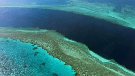 Ilmakuvaa Isolta valliriutalta, joka sijaitsee Korallimerellä Australian koillispuolella, missä suomalaispurjehtijat joutuivat merihätään.