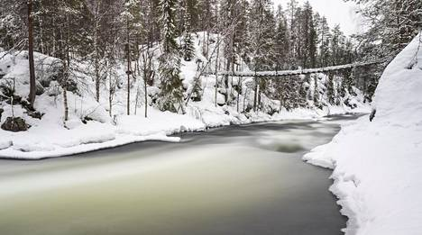 Talvinen Myllykoski Oulangan kansallispuistossa.
