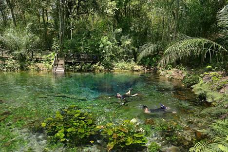 Brasiliassa asuessa sai nauttia maan mahtavasta, monipuolisesta luonnosta.