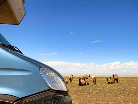Gobin autiomaa, Mongolia