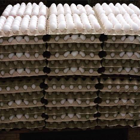 Kananmunat myydään 30 kappaleen kennoissa.