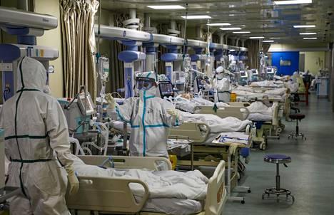 Lääkintähenkilöstö hoitaa koronavirukseen sairastuneita potilaita Kiinan Wuhanissa sijaitsevassa sairaalassa.