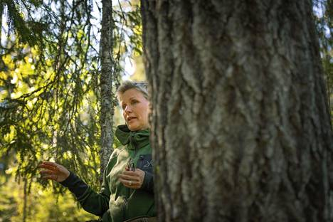 Tanja Karpela on vaihtanut päivänpolitiikan koirien kouluttamiseen.