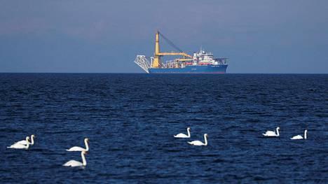 Venäläisen Gazpromin omistava Akademik Cherskiy -alus laskee kaasuputkea Itämereen.