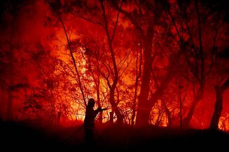 Palolaitoksen mukaan paloja ei tällä hetkellä voi pysäyttää.