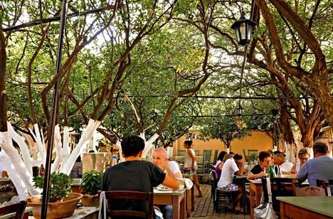 Ravintola Lemónokípoksessa voi nauttia hyvästä ruoasta sitruunapuiden alla.