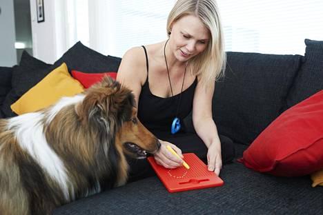 Sisu-koira seuraa vieressä, kun Sirkku Jauhiainen piirtää magneettitauluun.