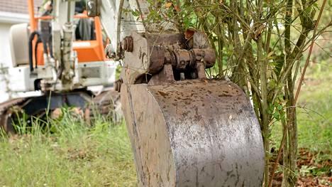 Puiden juuristoaluetta ei saa rakentamisen aikana eikä sen jälkeen korottaa paksulla maakerroksella.
