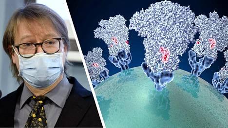 Professori Olli Vapalahden mukaan tässä vaiheessa ei ole selvää, onko lasten ja nuorten tartunnoissa kyse virusmuunnoksen ominaisuudesta vai jostain muusta tekijästä.