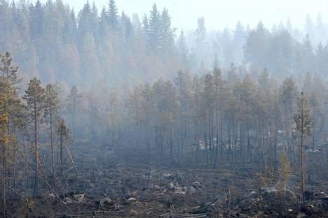 Sammutustöitä ovat vaikeuttaneet vaikeakulkuinen maasto ja haastavat tuuliolosuhteet.