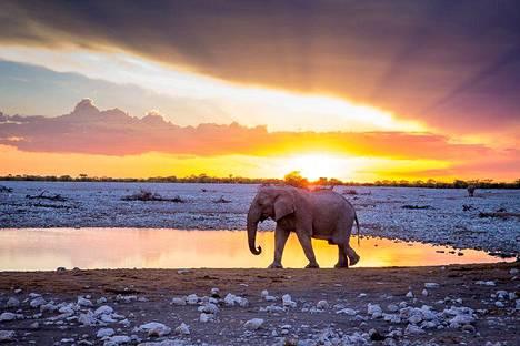 Roadtripillä Afrikan halki suosikiksi nousi Namibia.