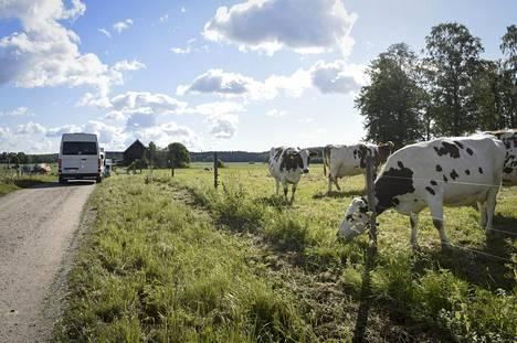 Kuvauspaikalla oli vastassa idyllinen maaseutunäkymä.