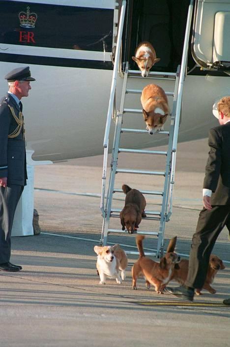 Corgit ovat myös matkustaneet Elisabetin mukana. Kuva vuodelta 1998.