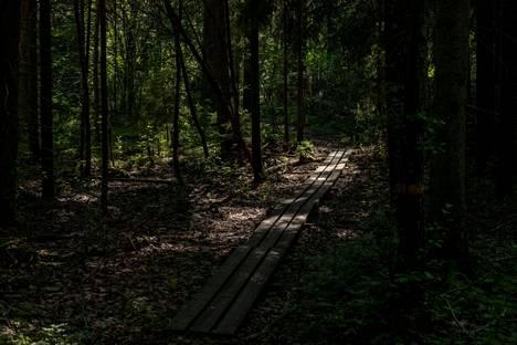 Luonnonpuisto edustaa eteläsuomalaista lehtometsää.