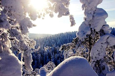 Talvinen kuva Vuokatilta.