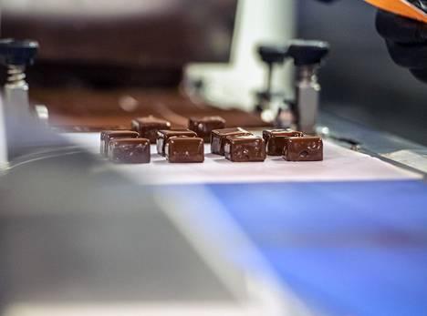 Aprikoosilla maustetut suklaaganache-konvehdit kulkevat liukuhihnalla temperointikoneen suklaaputouksen alta.