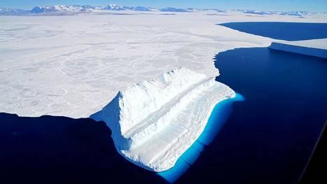 Suojelun piiriin kaivatuilla alueilla elää esimerkiksi pingviinejä, hylkeitä, merilintuja ja valaita.