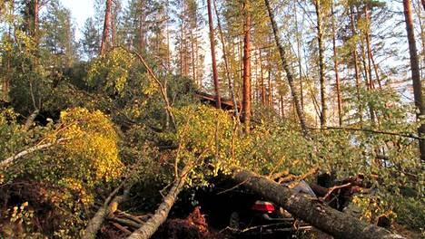 Voimakas tuuli kaatoi puita henkilöauton ja mökin päälle Joutsassa 23. syyskuuta. Kuvituskuva.