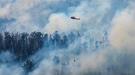 Maastopaloa sammuttanut helikopteri kuvattiin Australian Victorian osavaltiossa sunnuntaina.
