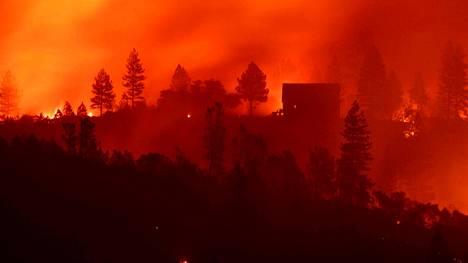 Entistä korkeampi lämpötila ja kovempi kuivuus yhdessä lisäävät tulipalojen syttymistä ja laajuutta.