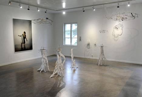 Taidekeskus Salmelan päärakennuksessa on Kirsi Kaulasen veistoksia ja Maria Laineen maalauksia.