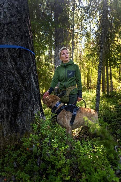 Tanja Karpela on mukana hankkeessa, jossa etsitään liito-oravien asuinalueita niin kaupunkien kupeesta kuin kaukaisista erämaista.