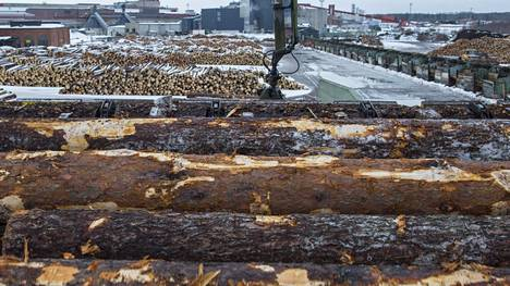 Metsäteollisuus aloittaa kuuden vuorokauden mittaisen työsulun sahoilla ja vaneritehtailla eri puolilla maata torstaina.