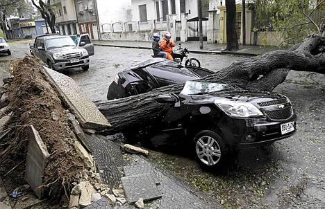 Myrsky kaatoi puita Montevideossa Uruguayssa.