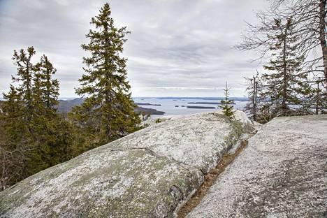Kolin jylhät maisemat toukokuisena torstaina näyttivät tältä ennen lumisateen alkua.
