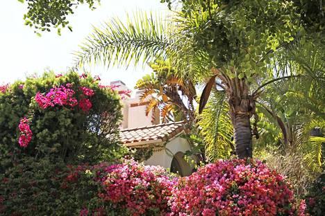 Kasvillisuus peittää Nicolen entisen kotitalon (suuri kuva). Vuonna 1994 O.J. Simpsonin Brentwoodin talo näytti hyvin erilaiselta. Murhien jälkeen FBI on näkynyt tiiviisti naapureiden katukuvassa.