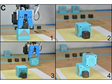 Emorobotti luo pieniä vauvarobotteja motorisoiduista kuutioista.