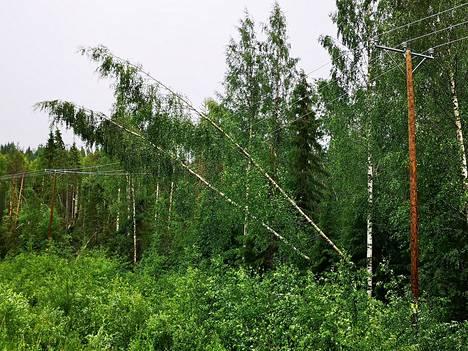 Kaikkiaan verkkoyhtiö Kajaven alueella Kainuussa oli sähköt poikki myrskyn seurauksena noin 7000 taloudesta.