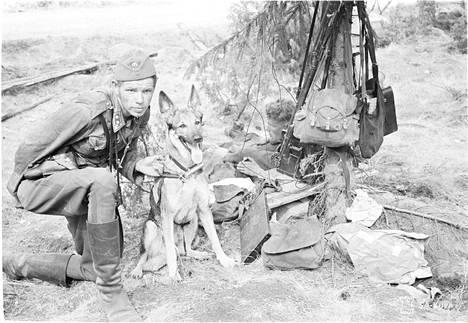 Sotakoira Siro hoitajansa luutnantti Luotolan kanssa.