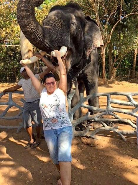 Arja Jekkonen pääsi ruokkimaan ja pesemään ammuttuja tai muuten loukkaantuneita elefantteja Shimogassa, jossa eläimiä hoidetaan kunnes ne voidaan päästää takaisin luontoon. —Elefantit päästetään yöksi vapauteen ja aamupäivällä niitä huhuillaan pesulle ja syömään. Paikalle tulee kuka tulee. Vakavimmat tapaukset ovat aluksi ympärivuorokautisessa hoidossa.