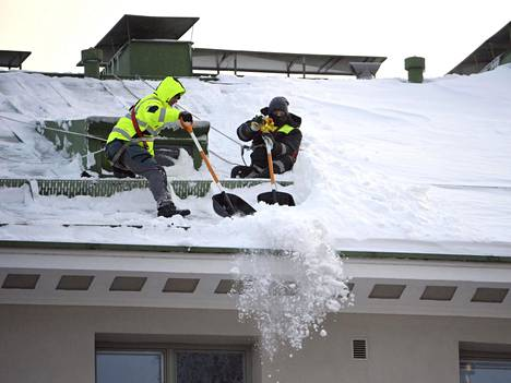 Tammikuisen Toini-pyryn seurauksena lumenpudottajille on taas kova tarve parin lähes lumettoman talven jälkeen. Miehet pudottivat lunta Helsingissä Runeberginkadulla sijaitsevan kerrostalon katolta torstaina.
