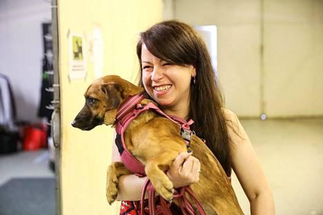 Daisy-koira hiljalleen rentoutumassa onnellisen omistajan Jaanan sylissä.