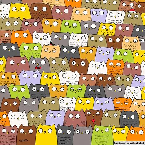 Löytyykö kissa?