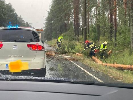 Kuopion Riistavedellä puun kaatuminen tielle aiheutti iltapäivällä isot autojonot