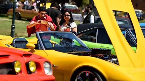Näyttelyautot oli asetettu kairolaiseen puistoon.