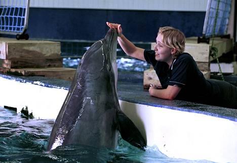 Delfiinit ovat fiksuja ja nopeita oppimaan.
