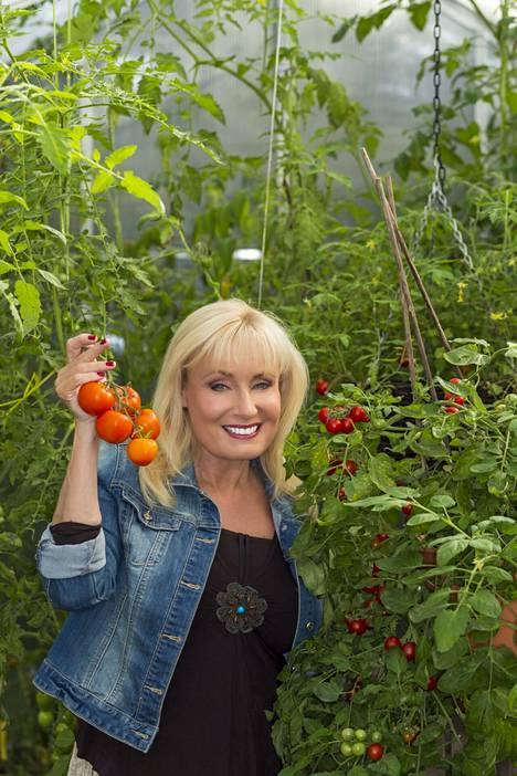 Laulaja Sonja Lumpeen pihassa kasvaa kymmeniä eri tomaattilajikkeita.