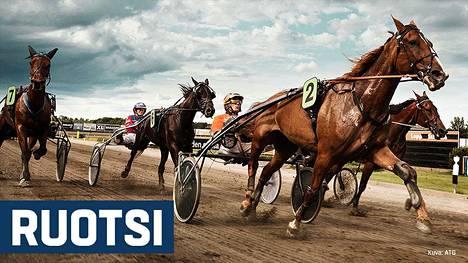Ravivihje: Toto86 Solvalla ja Åby 17.4.2019