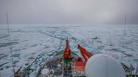 Polarstern palaamassa jäätymispaikalleen.