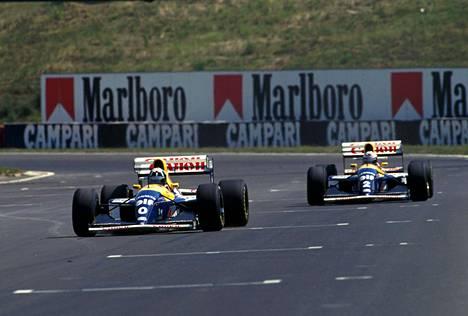 Alain Prost (edellä) voitti mestaruuden 1993, Damon Hill 1996. Vuosina 1994 ja 1995 Hill hävisi mestaruuskamppailut niukasti Michael Schumacherille.