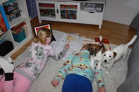 Lapset Ida 13, Emma 11 (kuvassa) ja ensi viikolla 9 vuotta täyttävä Verneri (kuvassa) ovat koronan vuoksi kotiopissa. Fiia-koira pitää seuraa.