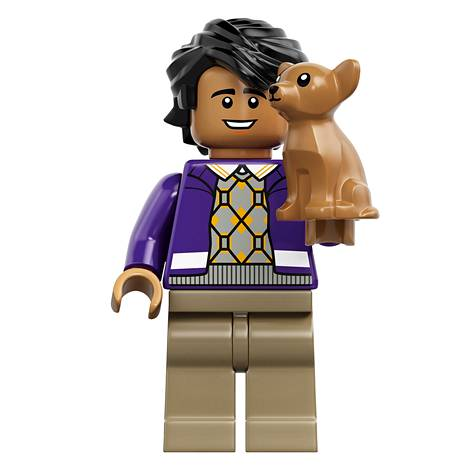 Raj Lego-hahmona.