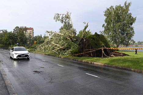 Myrskyn jälkiä Oulussa.