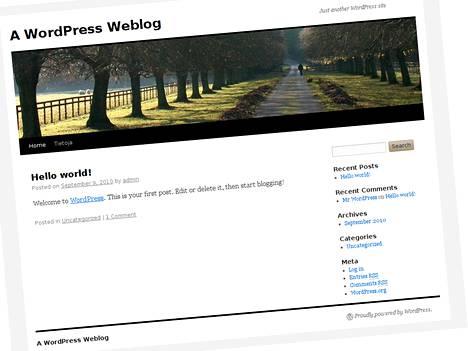 Luotavan Wordpress-sivun oletusnäkymä.